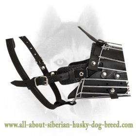 'No Mash' Attack Training Wire Basket Muzzle for Siberian Husky