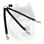 Optional Nylon Siberian Husky Leash for Walking Three Dogs