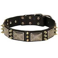 Gorgeous Wide Leather Siberian Husky Collar with Plates and Spikes
