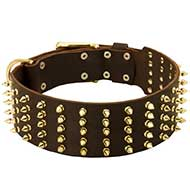Marvelous Leather Siberian Husky Collar with 5 Rows of Brass Spikes