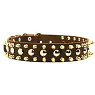 Exclusive Leather Siberian Husky Collar with Spikes and Studs
