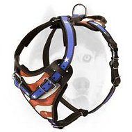 """American Patriot"" adjustable leather harness for Siberian Husky"