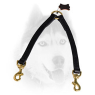 Stitched Leather Leash for Safe Walking with 2 Canines