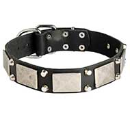 Exclusive Leather Siberian Husky Collar with Nickel Plates and Pyramids