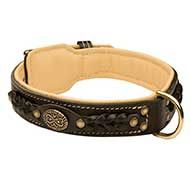 Nappa Padded Leather Siberian Husky Collar - Exclusive Design