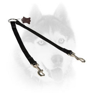 All Weather Couple Siberian Husky Leash for Walking 2 Dogs