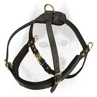 Multi-task leather pulling harness for Siberian Husky