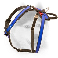 Russian Patriotic Leather Dog Harness for Walking and Training