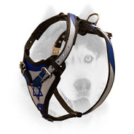 Style Dog Harness for Tracking and Walking