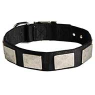 Water Resistant Nylon Siberian Husky Collar with Massive Plates