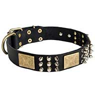 Luxury Leather Spiked and Studded Siberian Husky Collar with Brass Plates