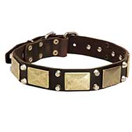 Decorated Leather Siberian Husky Collar with Brass Massive Plates and Nickel Pyramids