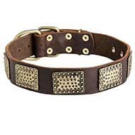 Gorgeous Leather Siberian Husky Collar with Hammered Brass Plates