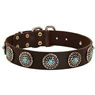 Gorgeous Leather Siberian Husky Collar with Silver Plated Circles and Blue Stones