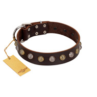 """Gape Buster"" FDT Artisan Brown Leather Siberian Husky Collar with One Row of Studs"