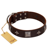 """Cold Star"" Designer FDT Artisan Brown Leather Siberian Husky Collar with Silver-Like Adornments"
