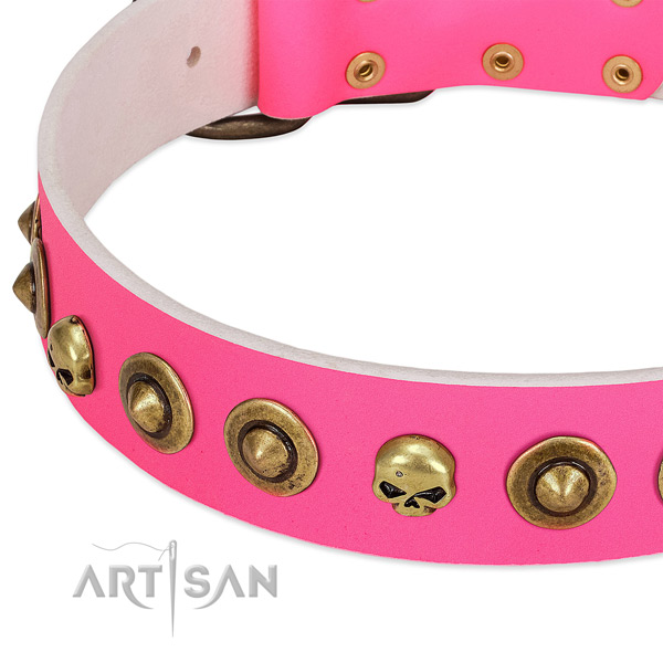 Extraordinary studs on natural leather collar for your dog