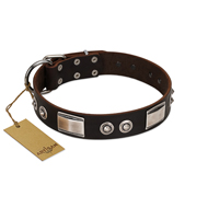 """Baller Status"" FDT Artisan Brown Leather Siberian Husky Collar Adorned with a Set of Chrome Plated Studs and Plates"