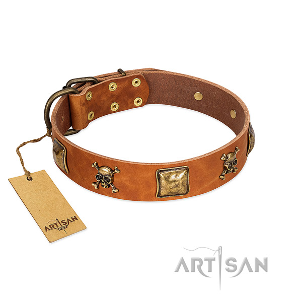 Awesome full grain natural leather dog collar with rust resistant adornments