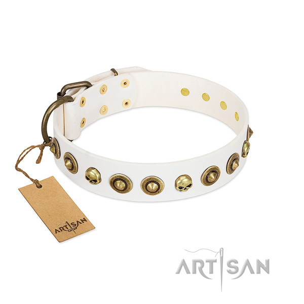 Full grain leather collar with unusual decorations for your doggie