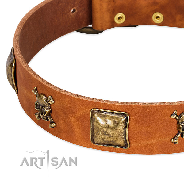 Stylish adornments on genuine leather collar for your dog