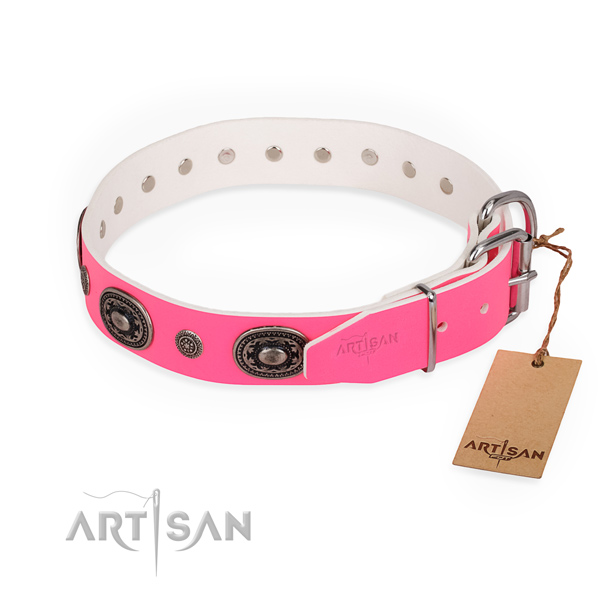 Comfortable wearing trendy dog collar with strong D-ring