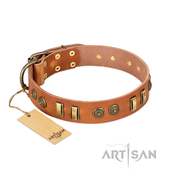 Corrosion resistant adornments on full grain leather dog collar for your canine