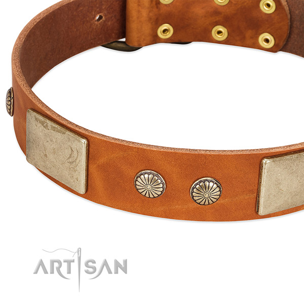 Reliable traditional buckle on full grain leather dog collar for your dog