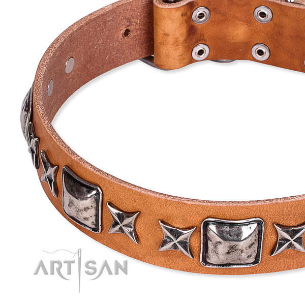 Handy use embellished dog collar of quality full grain natural leather