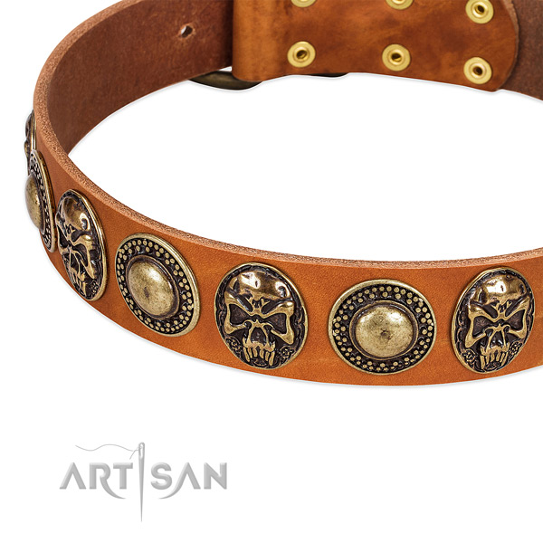 Rust-proof D-ring on genuine leather dog collar for your dog