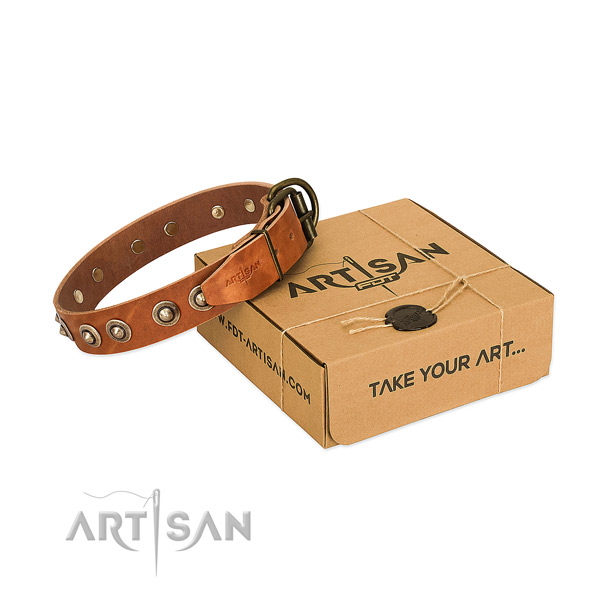 Rust resistant adornments on genuine leather dog collar for your dog