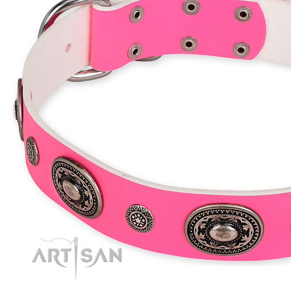 Natural genuine leather dog collar with amazing reliable embellishments