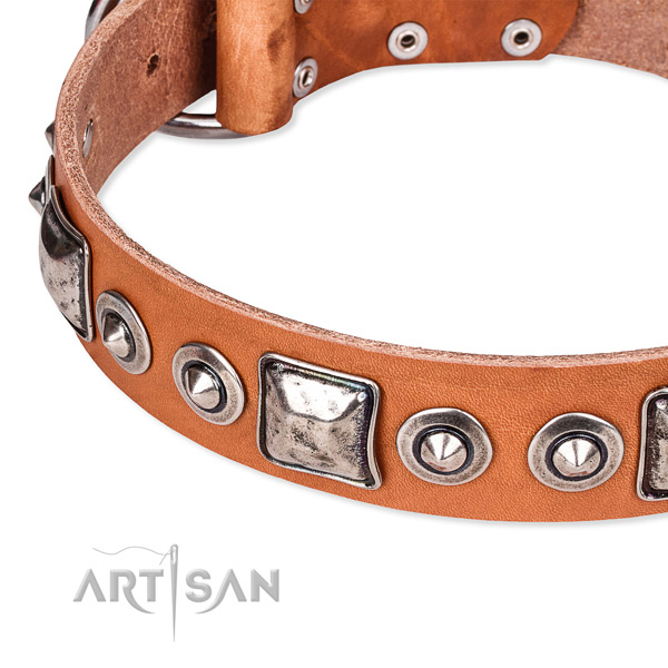 Top notch genuine leather dog collar handmade for your handsome doggie