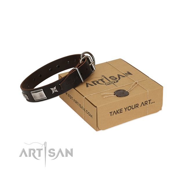 Stylish collar of full grain leather for your beautiful dog