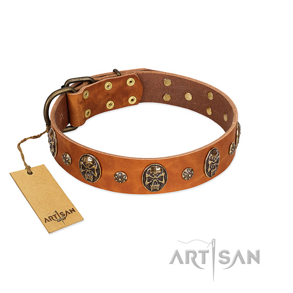 Extraordinary full grain natural leather collar for your four-legged friend