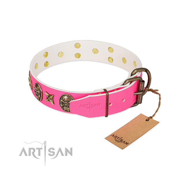 Strong traditional buckle on leather collar for everyday walking your pet