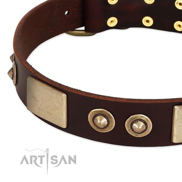 Corrosion proof D-ring on full grain genuine leather dog collar for your canine