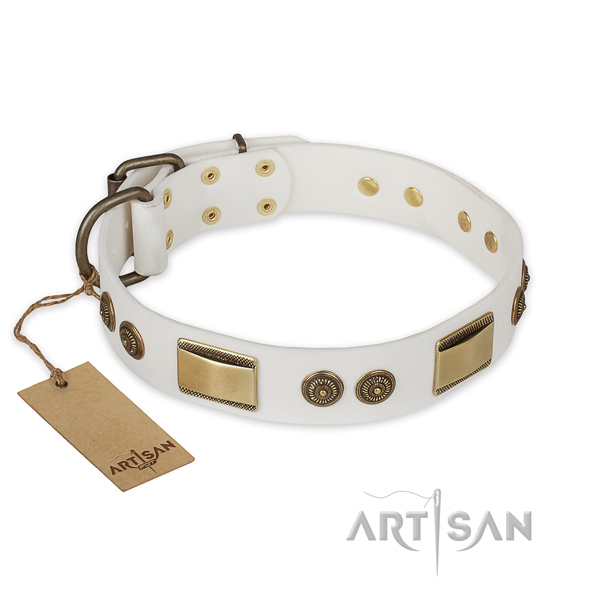 Decorated leather dog collar for daily walking