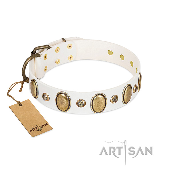 Leather dog collar of high quality material with stylish design studs