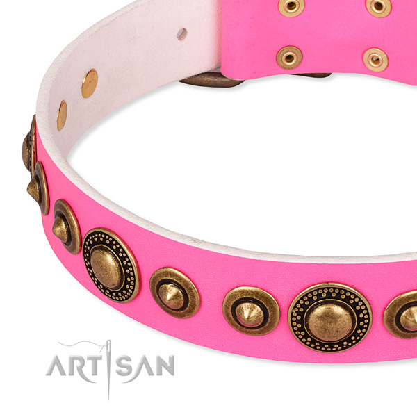 High quality full grain leather dog collar handcrafted for your beautiful canine
