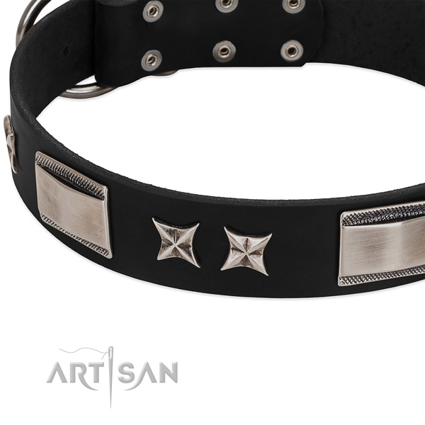 Reliable full grain natural leather dog collar with strong fittings
