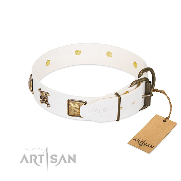 Top notch leather dog collar with reliable decorations
