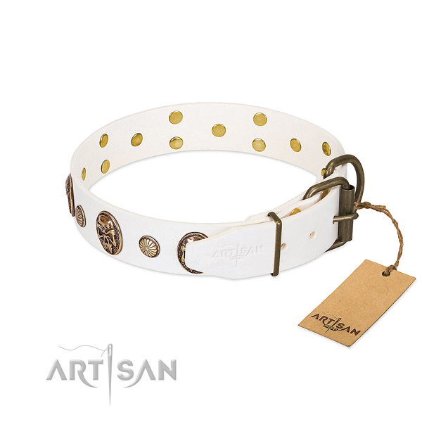 Corrosion resistant fittings on full grain genuine leather collar for stylish walking your dog
