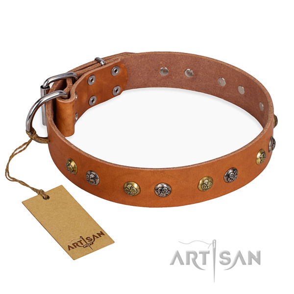 Comfy wearing adorned dog collar with rust-proof buckle
