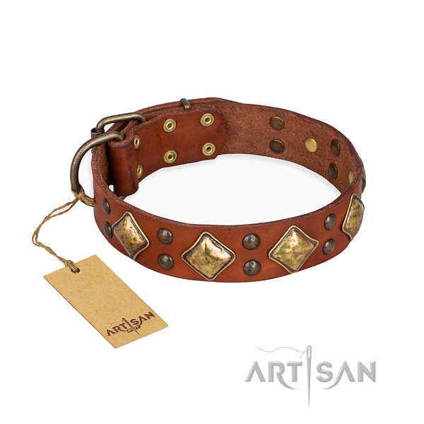 Handy use trendy dog collar with rust-proof buckle