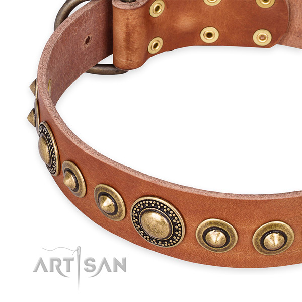 Best quality full grain leather dog collar created for your impressive four-legged friend