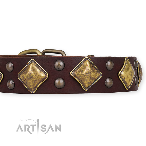 Full grain leather dog collar with exquisite durable decorations