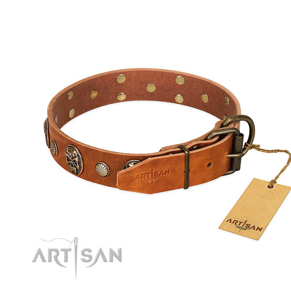 Rust resistant traditional buckle on full grain leather collar for everyday walking your doggie