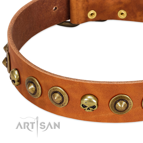 Inimitable adornments on natural leather collar for your dog
