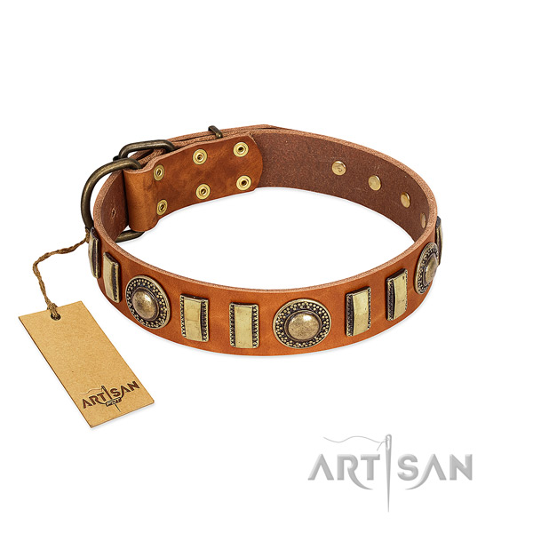 Best quality natural leather dog collar with strong fittings